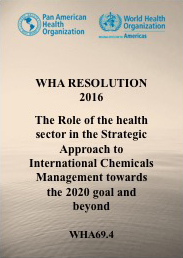 The Role of the Health Sector in the Strategic Approach to International Chemicals Management towards the 2020 Goal and Beyond
