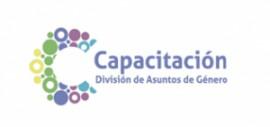 Curso a distancia de la CEPAL: Estadísticas e Indicadores de Género