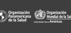 Llamado para cargo de Asesor en Salud y Mortalidad Materna de la OPS grado P4